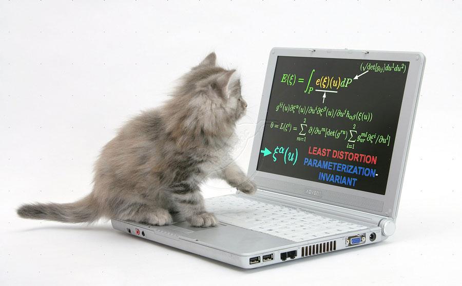 Jak wybrać laptopa?
